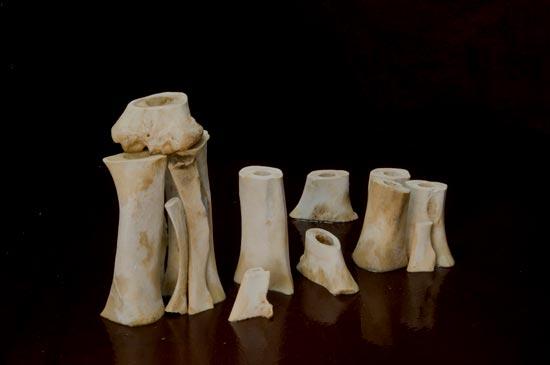 """More Bones (Breton Bones) Dye Transfer Prints 12.5"""" x 19"""" 2009"""